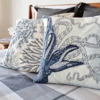 17 Room 2 octopus cushion