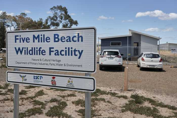 Five Mile beach Wildlife facility