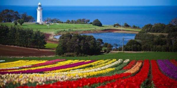 The Best Things To Do In Tasmania